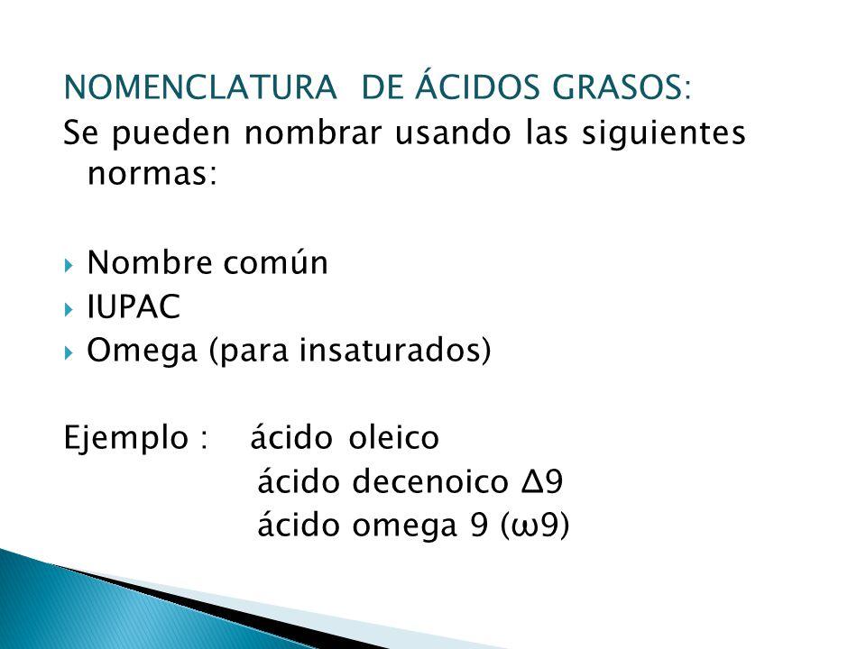 NOMENCLATURA DE ÁCIDOS GRASOS: