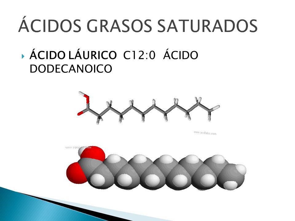 ÁCIDOS GRASOS SATURADOS