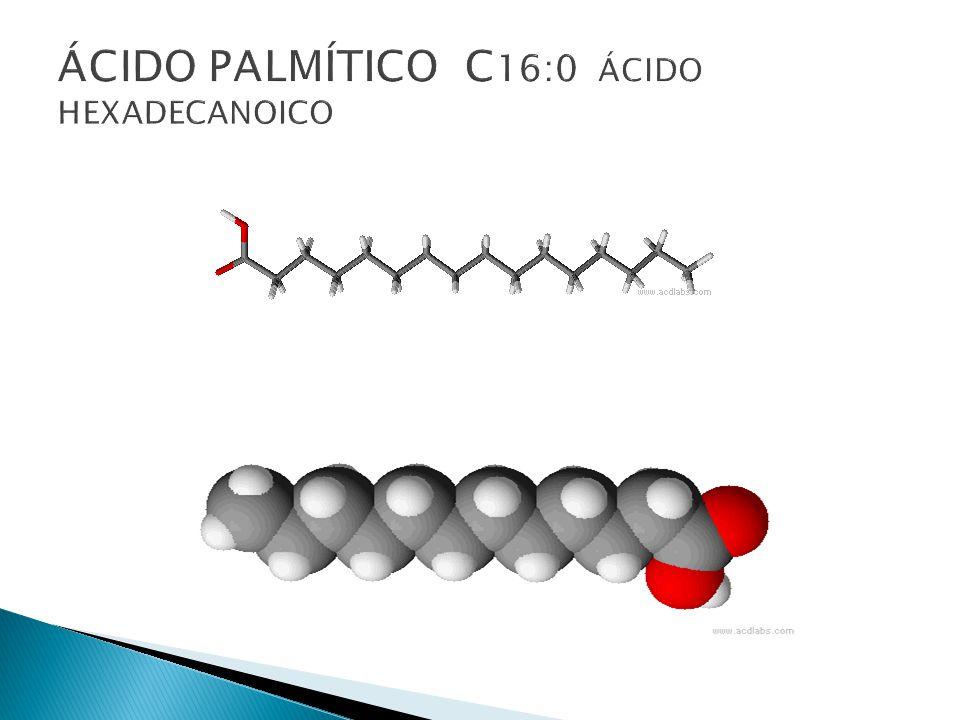 ÁCIDO PALMÍTICO C16:0 ÁCIDO HEXADECANOICO