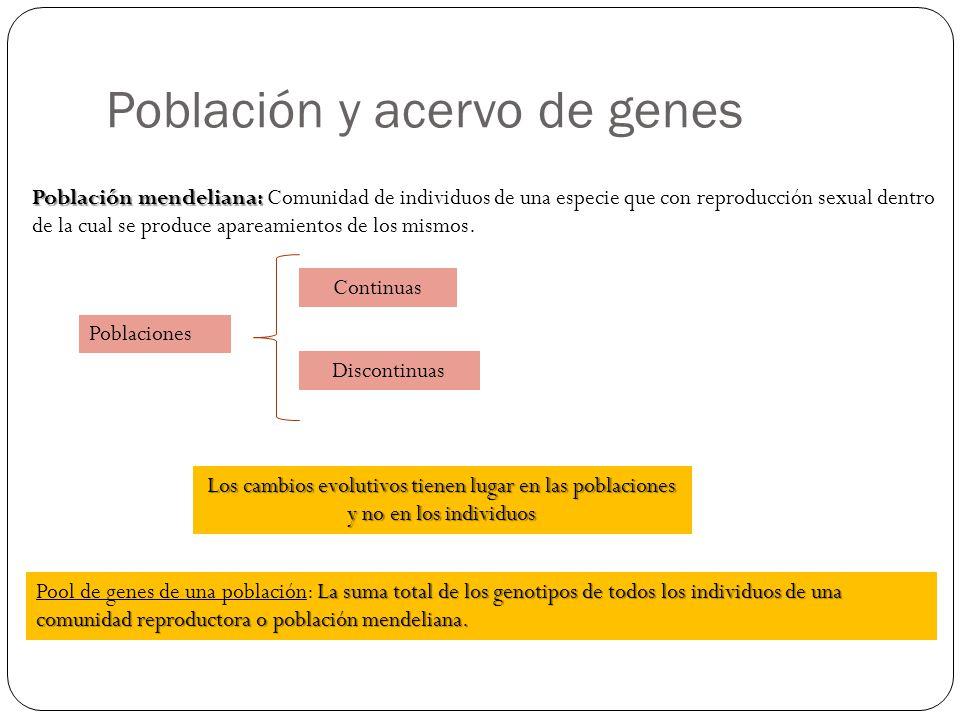Población y acervo de genes