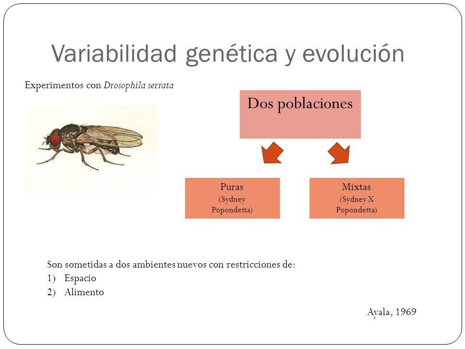 Variabilidad genética y evolución