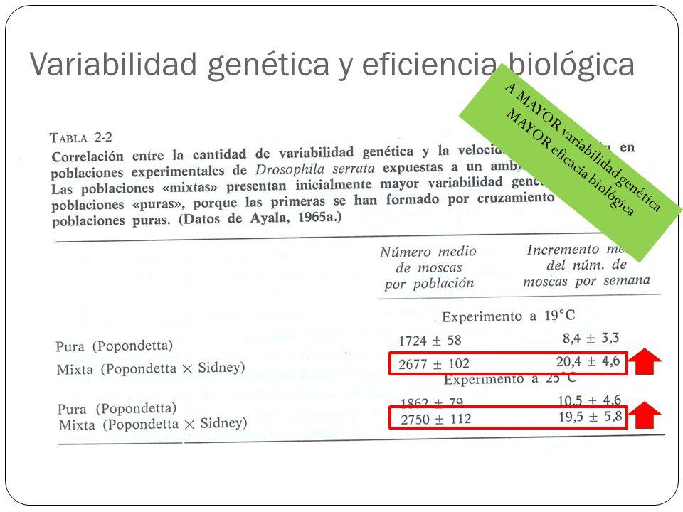 Variabilidad genética y eficiencia biológica