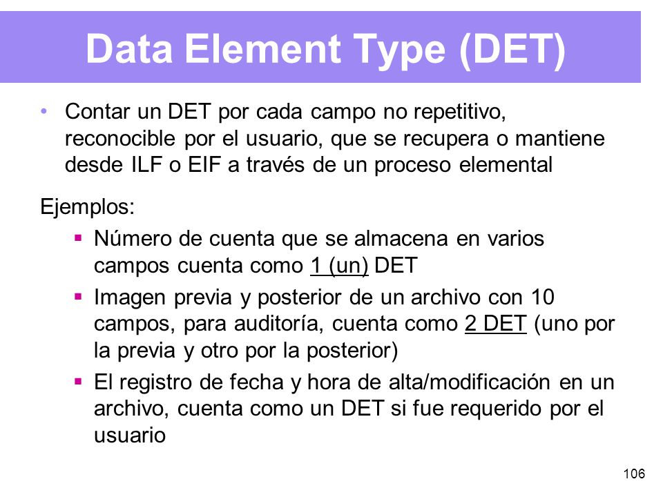 Data Element Type (DET)
