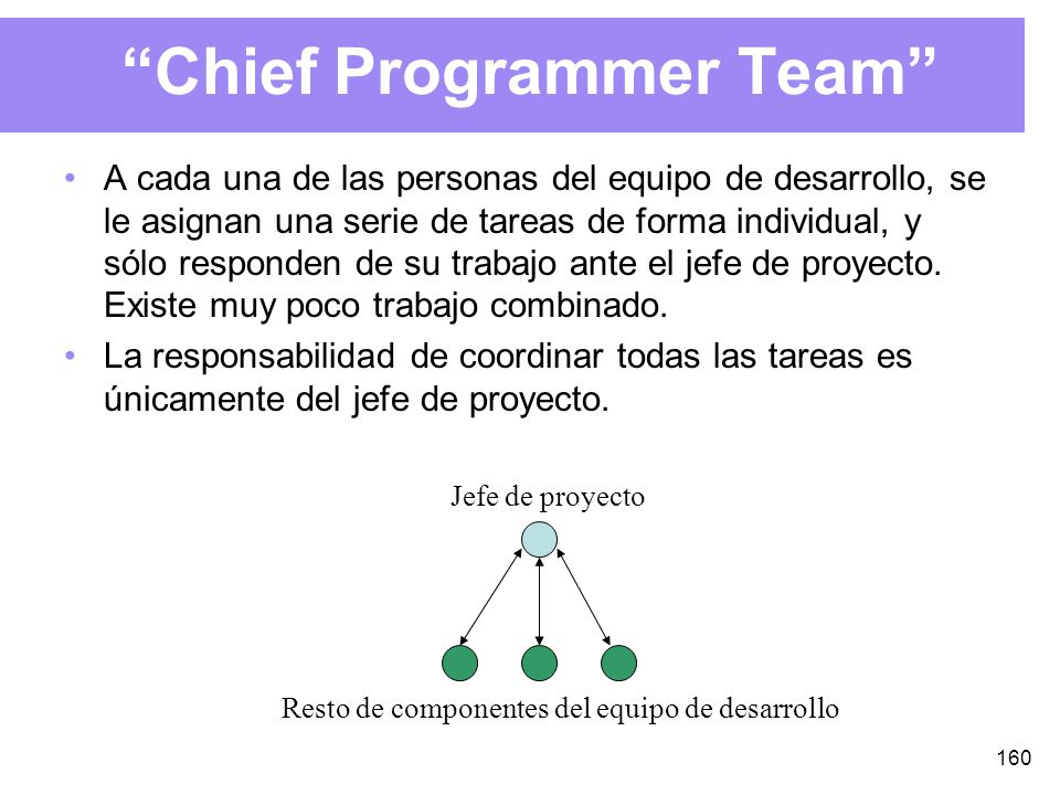Chief Programmer Team