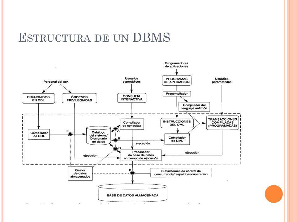 Estructura de un DBMS