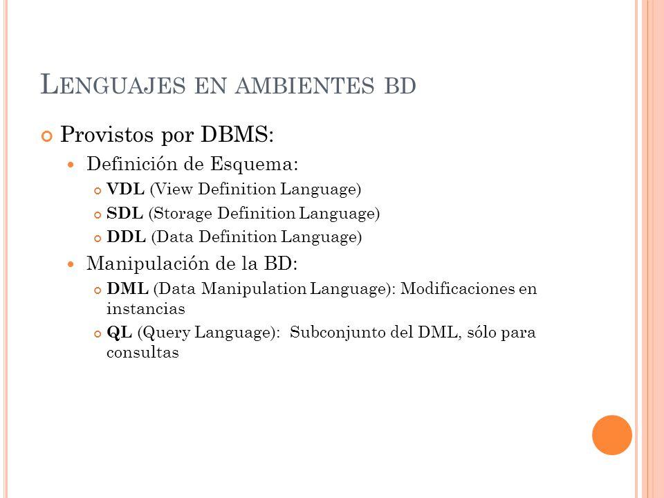 Lenguajes en ambientes bd
