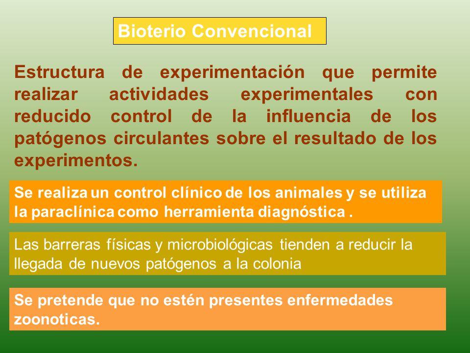 Bioterio Convencional