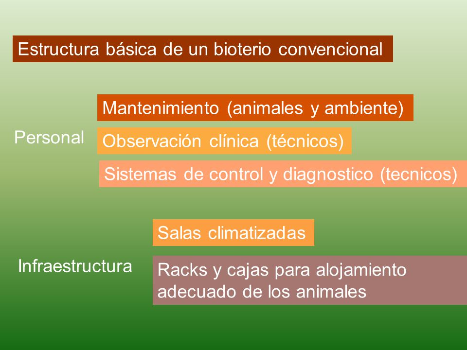 Estructura básica de un bioterio convencional