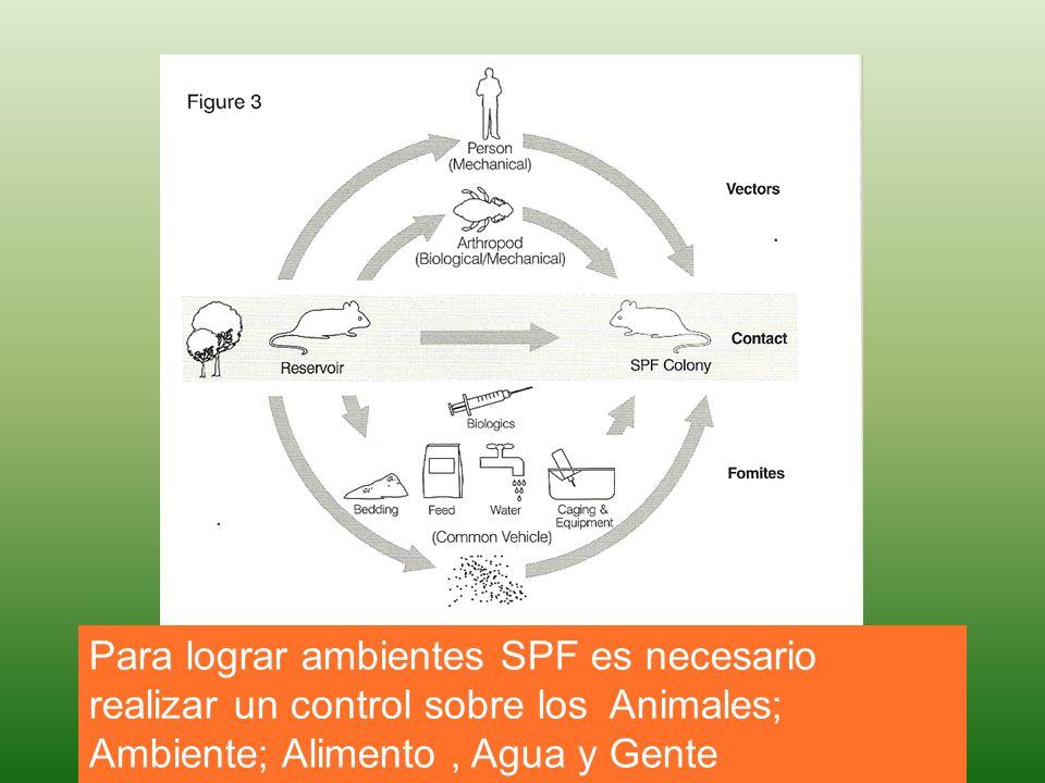 Para lograr ambientes SPF es necesario realizar un control sobre los Animales; Ambiente; Alimento , Agua y Gente