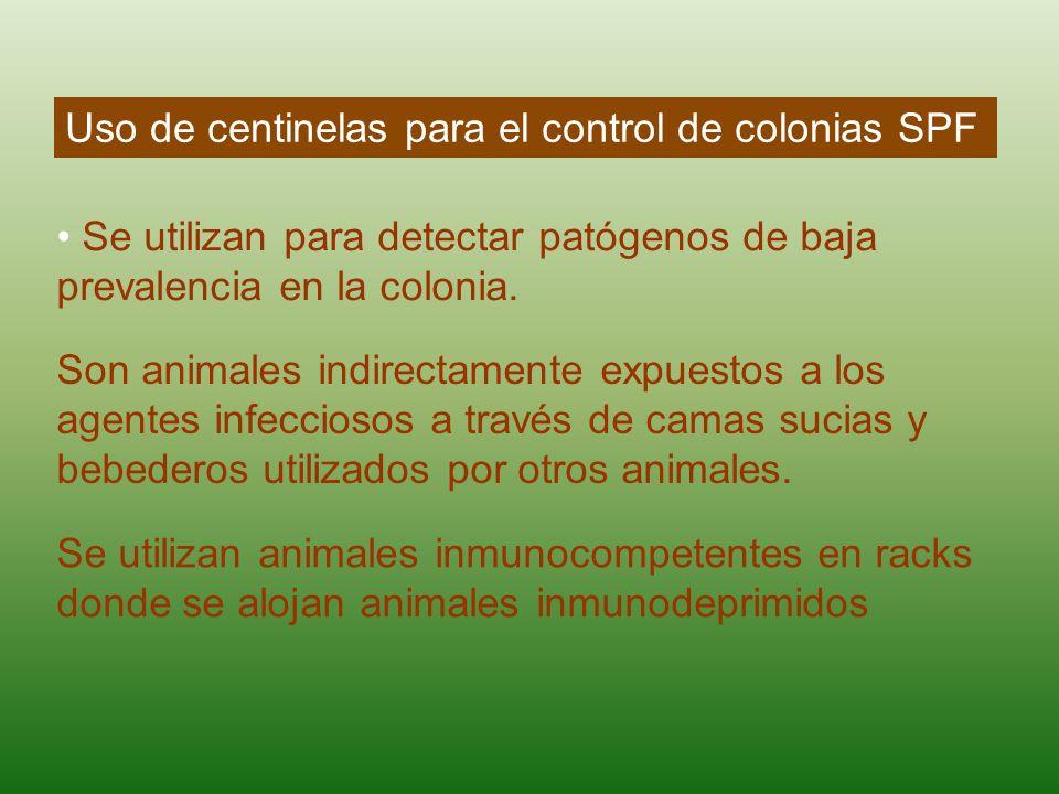 Uso de centinelas para el control de colonias SPF