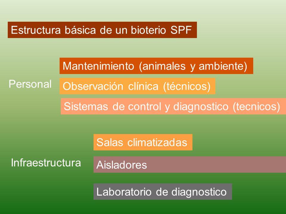 Estructura básica de un bioterio SPF