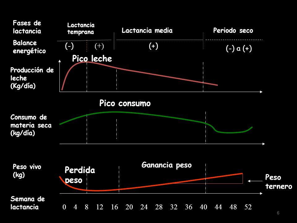 Pico leche Pico consumo Perdida peso (-) (+) (+) (-) a (+)