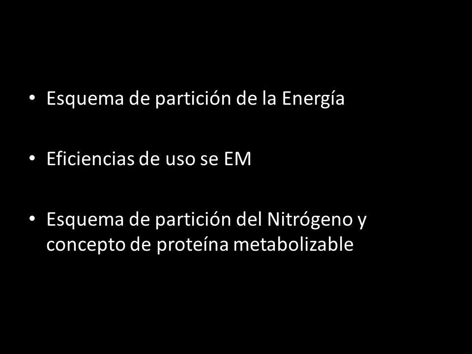 Esquema de partición de la Energía