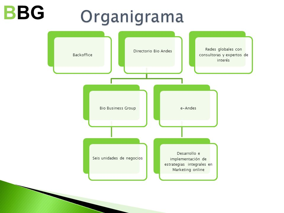 BBG Organigrama Backoffice Directorio Bio Andes Bio Business Group
