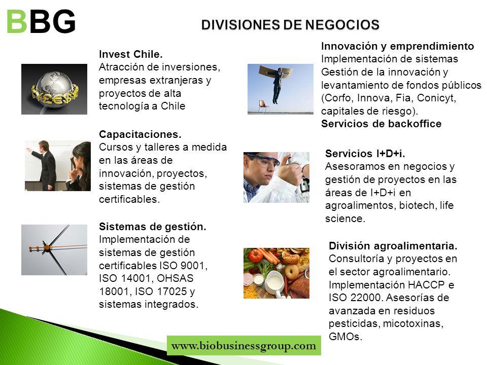 DIVISIONES DE NEGOCIOS
