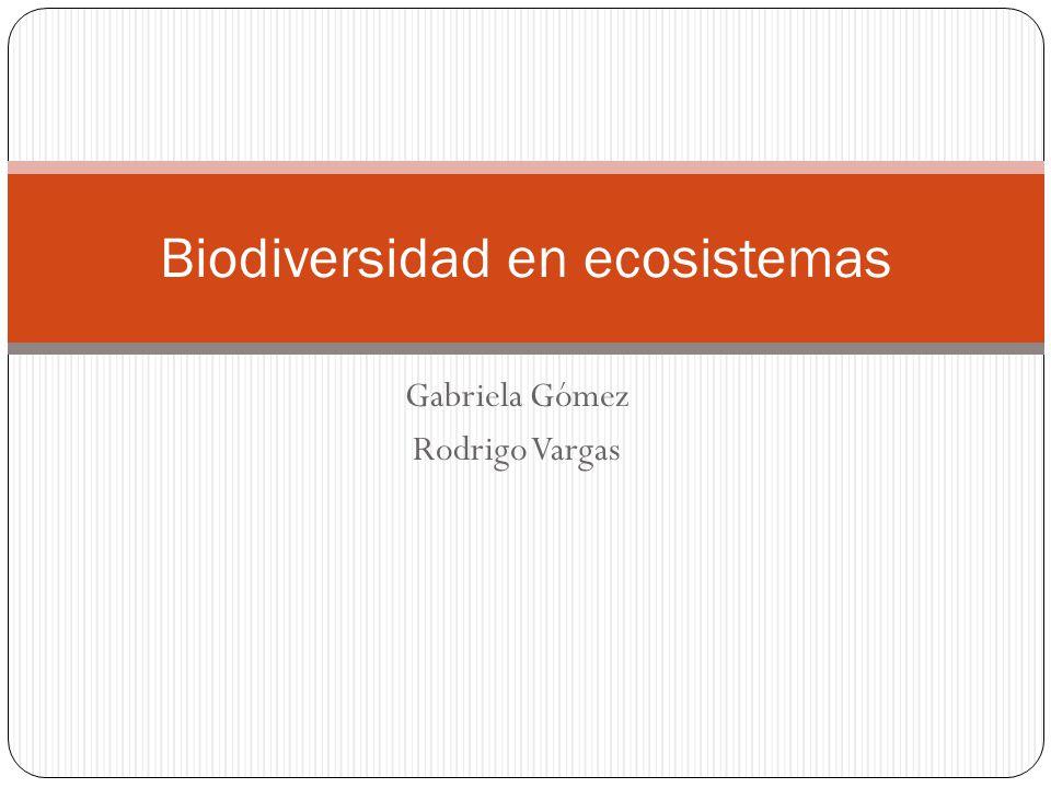 Biodiversidad en ecosistemas