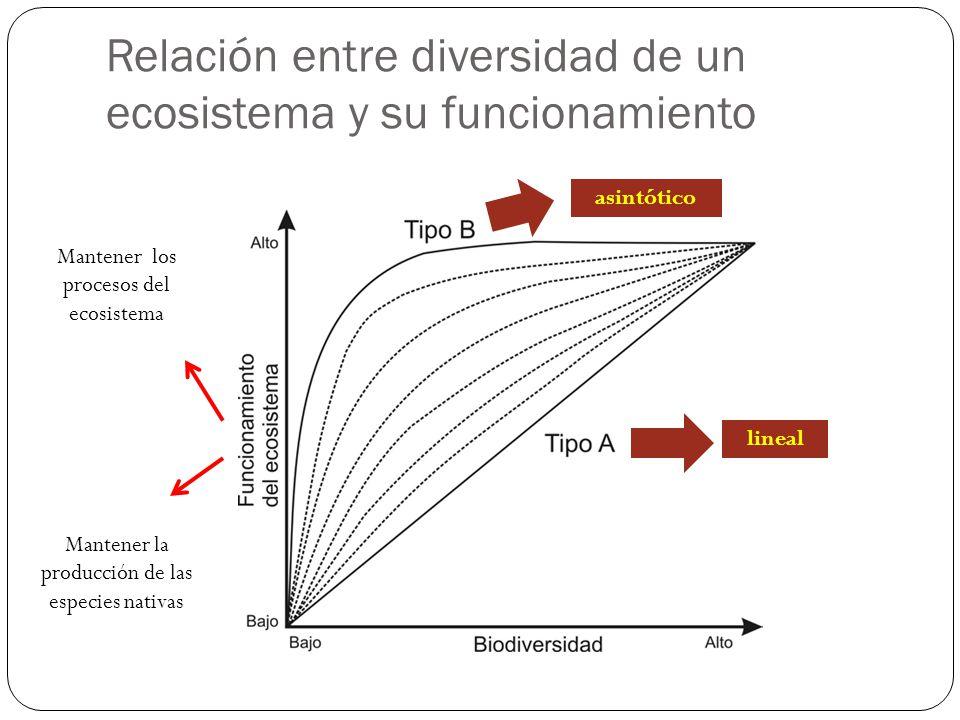 Relación entre diversidad de un ecosistema y su funcionamiento