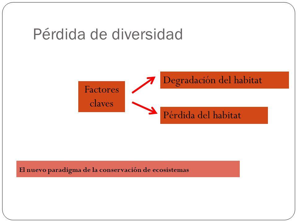 Pérdida de diversidad Degradación del habitat Factores claves