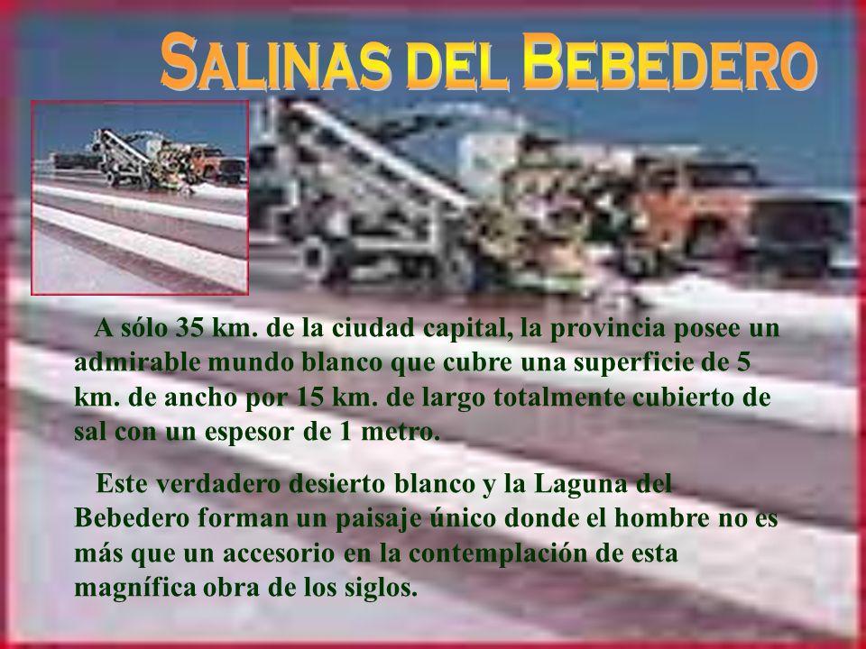 Salinas del Bebedero