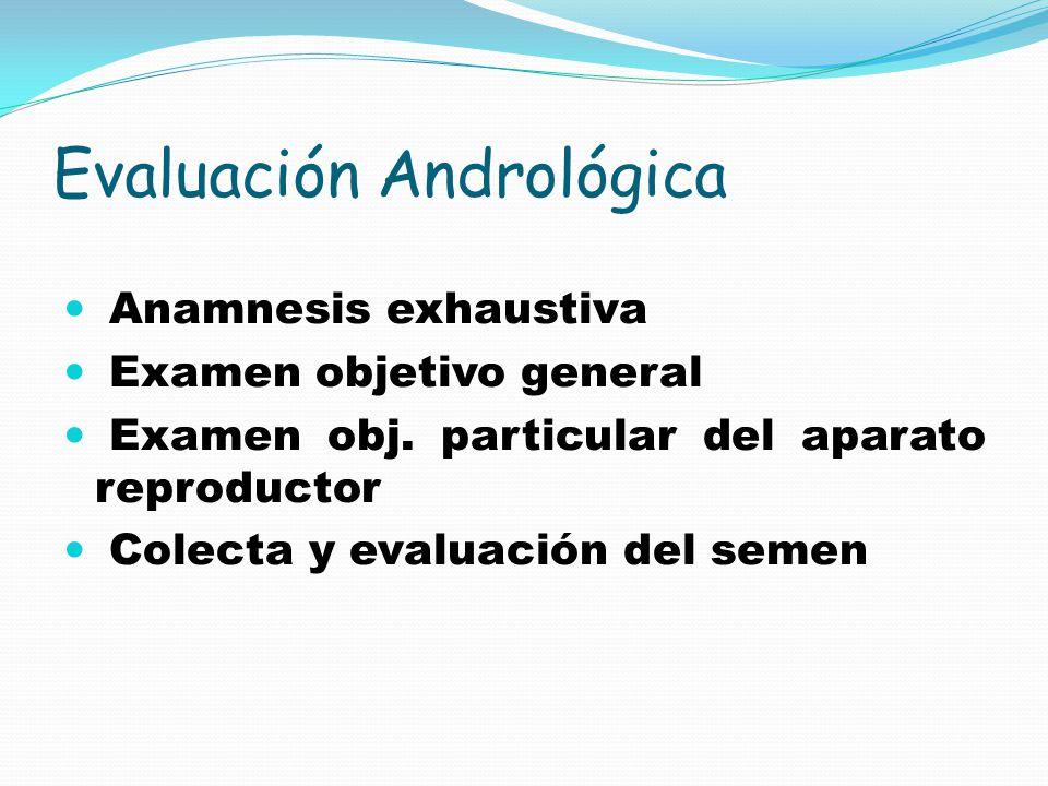 Evaluación Andrológica