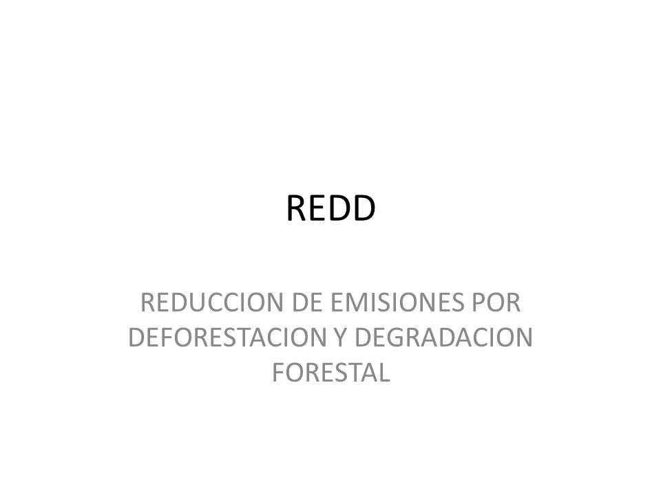REDUCCION DE EMISIONES POR DEFORESTACION Y DEGRADACION FORESTAL