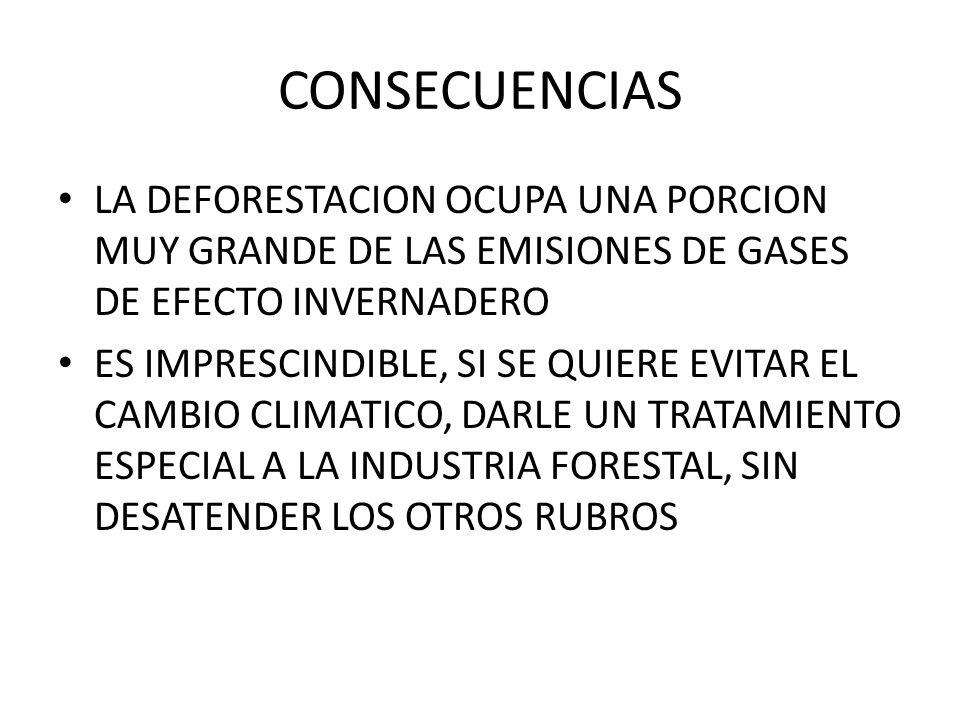 CONSECUENCIAS LA DEFORESTACION OCUPA UNA PORCION MUY GRANDE DE LAS EMISIONES DE GASES DE EFECTO INVERNADERO.