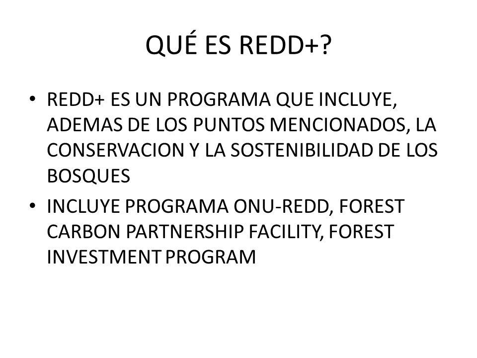 QUÉ ES REDD+ REDD+ ES UN PROGRAMA QUE INCLUYE, ADEMAS DE LOS PUNTOS MENCIONADOS, LA CONSERVACION Y LA SOSTENIBILIDAD DE LOS BOSQUES.