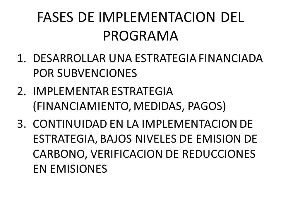 FASES DE IMPLEMENTACION DEL PROGRAMA