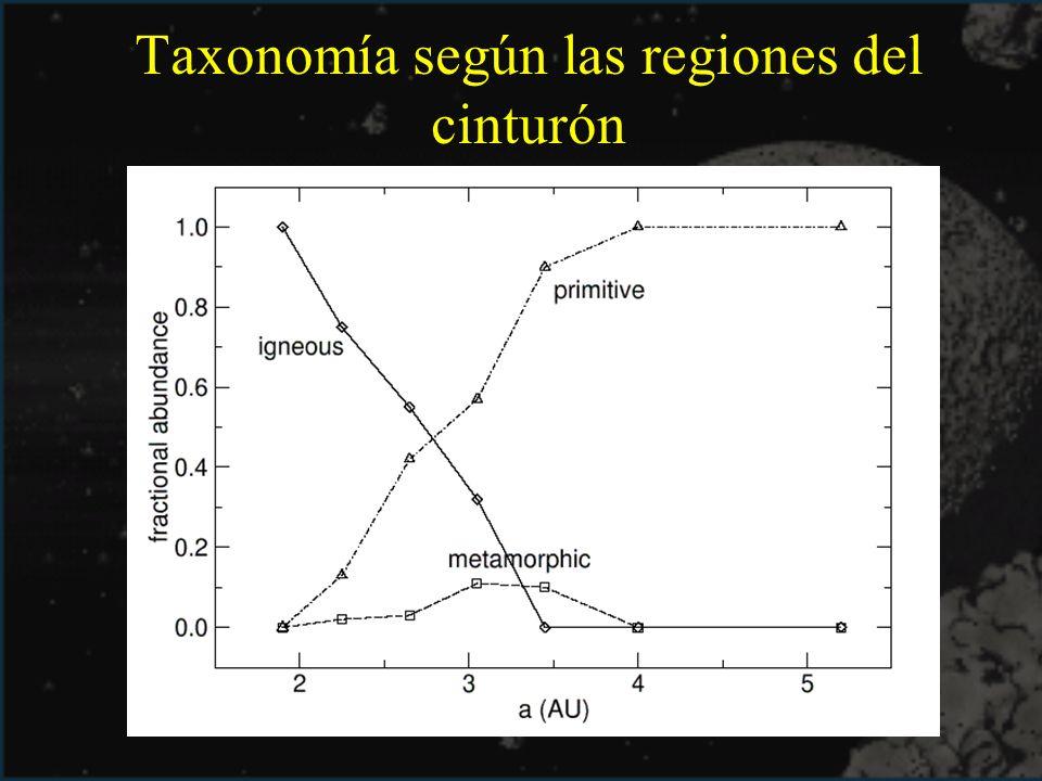 Taxonomía según las regiones del cinturón