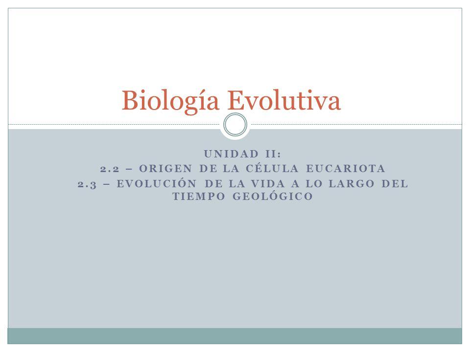 Biología Evolutiva Unidad II: 2.2 – origen de la célula eucariota
