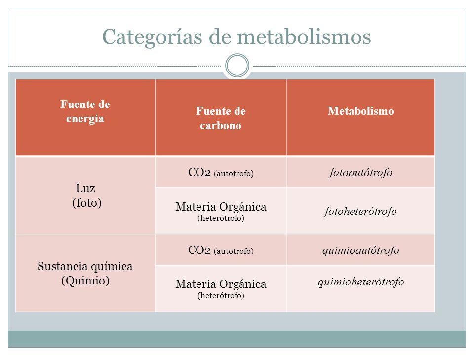 Categorías de metabolismos