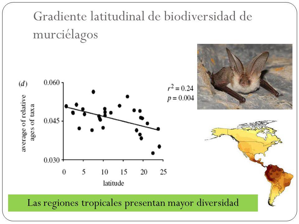 Gradiente latitudinal de biodiversidad de murciélagos
