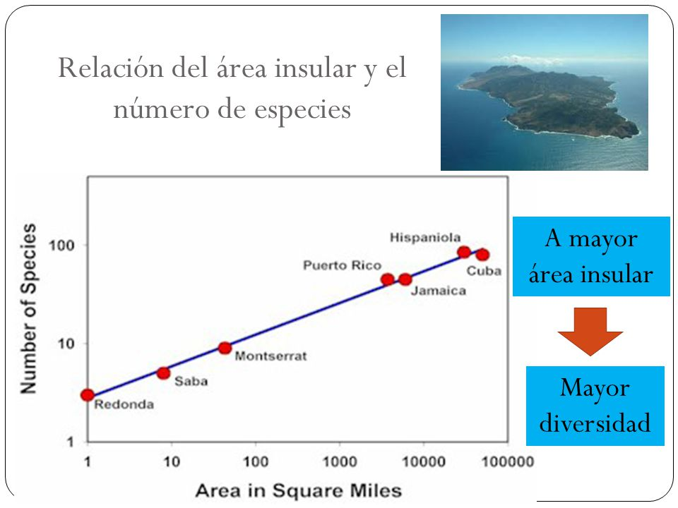 Relación del área insular y el número de especies