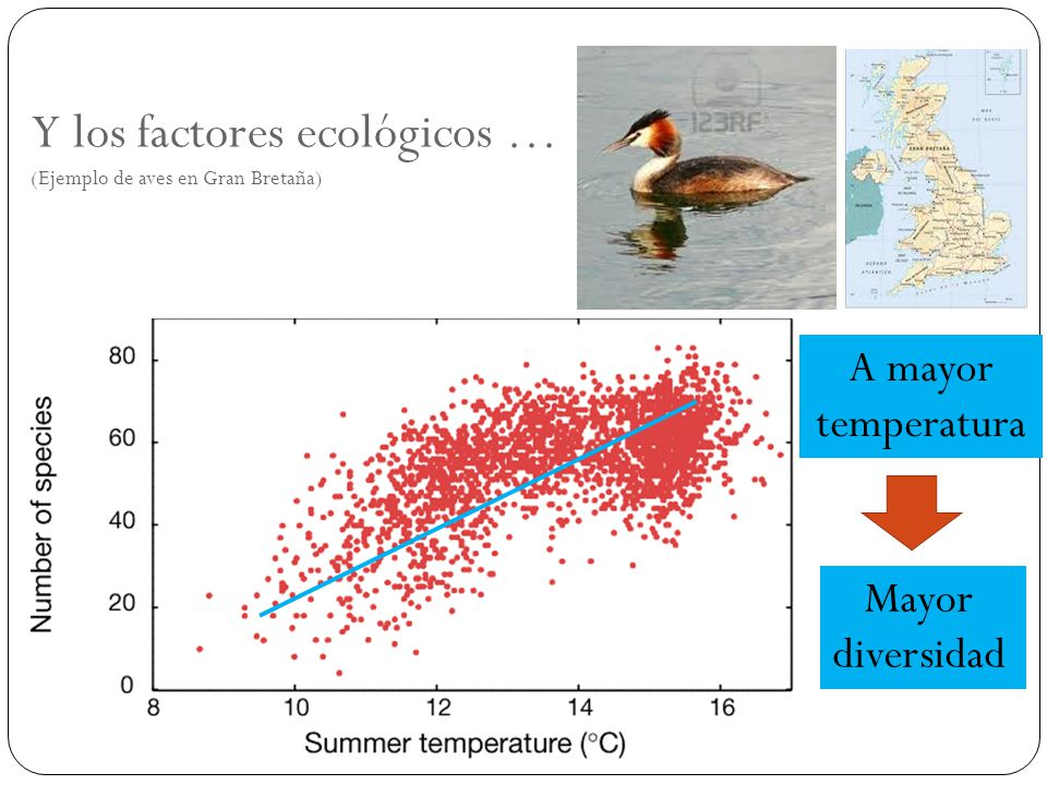 Y los factores ecológicos … (Ejemplo de aves en Gran Bretaña)