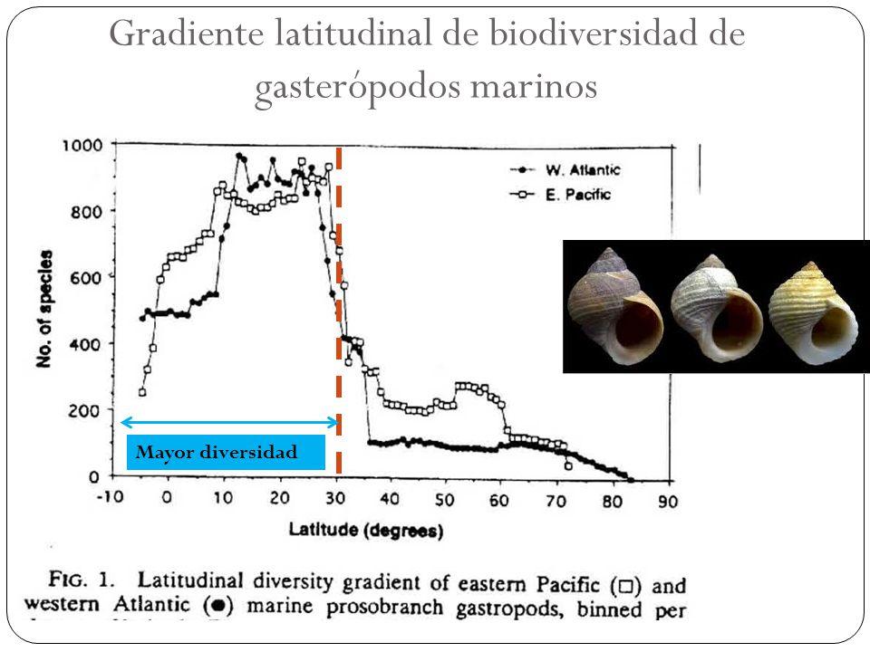 Gradiente latitudinal de biodiversidad de gasterópodos marinos