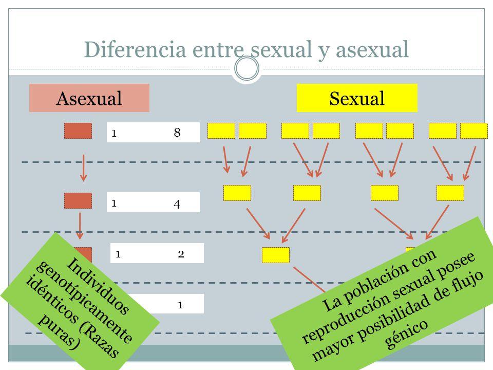 Diferencia entre sexual y asexual