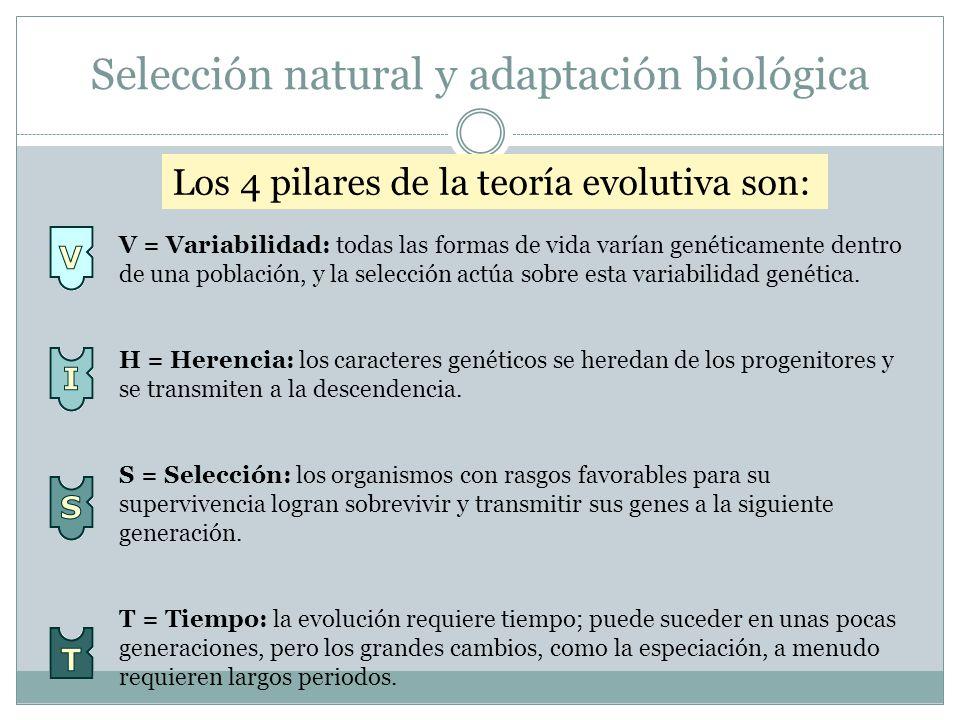 Selección natural y adaptación biológica