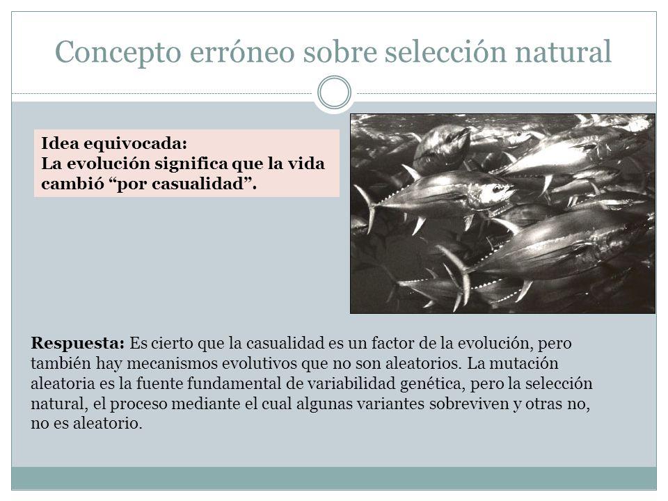 Concepto erróneo sobre selección natural