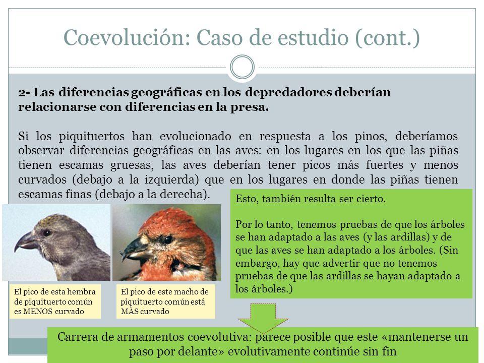 Coevolución: Caso de estudio (cont.)