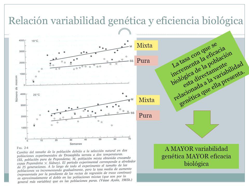 Relación variabilidad genética y eficiencia biológica