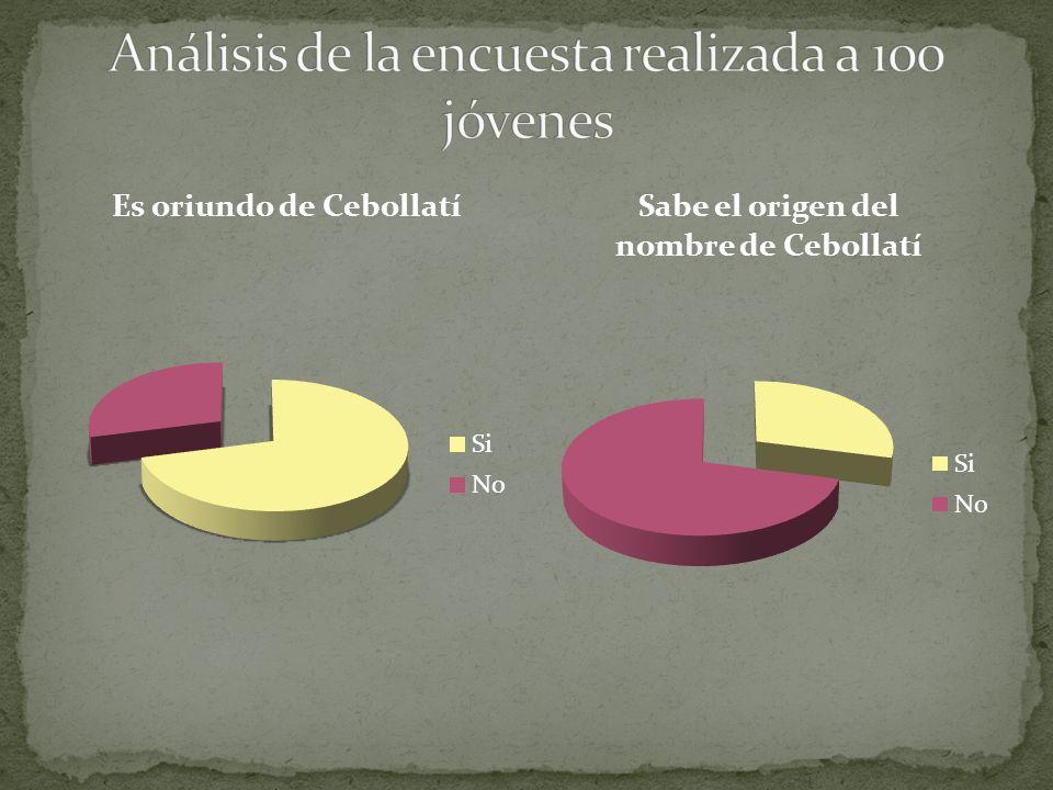 Análisis de la encuesta realizada a 100 jóvenes