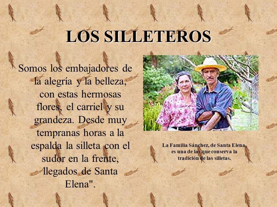 LOS SILLETEROS