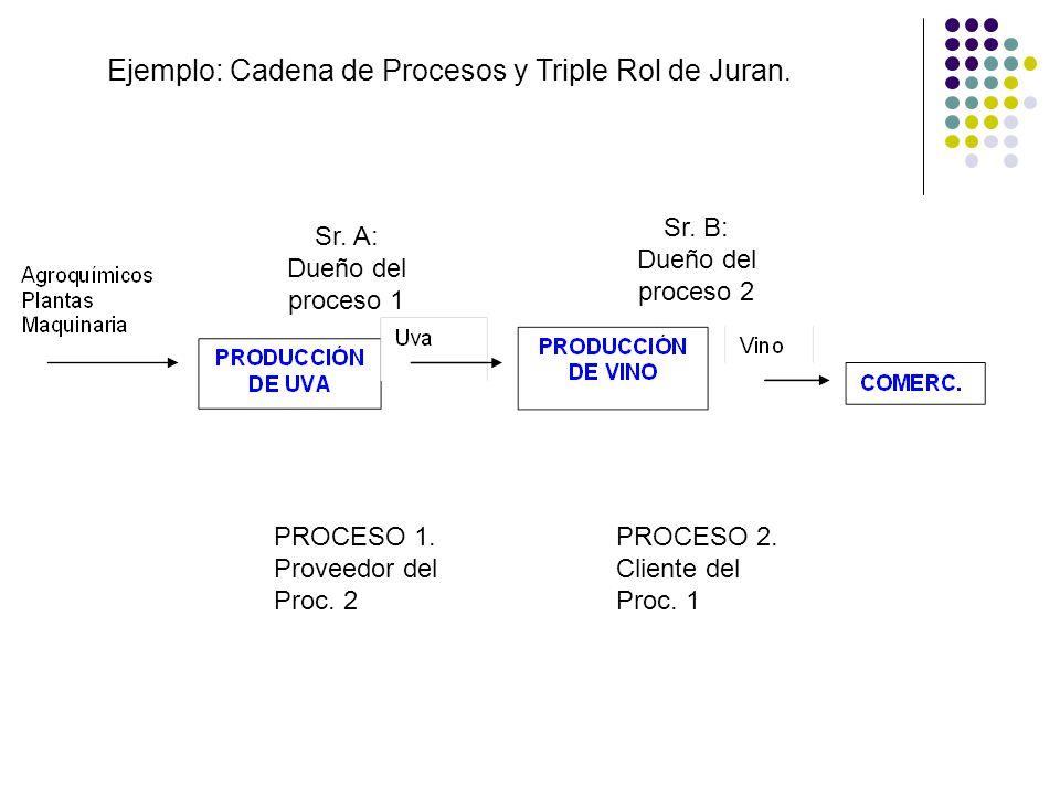 Ejemplo: Cadena de Procesos y Triple Rol de Juran.