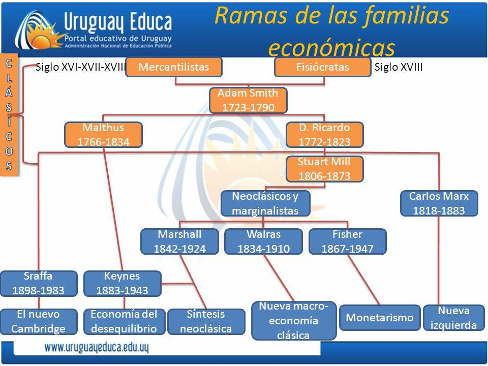 Ramas de las familias económicas