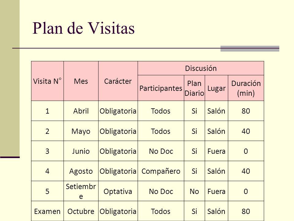 Plan de Visitas Visita N° Mes Carácter Discusión Participantes