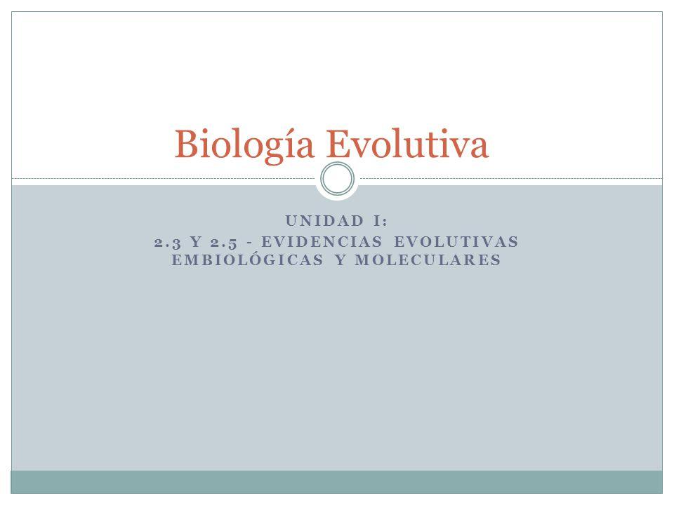 Unidad I: 2.3 y 2.5 - Evidencias evolutivas EMBIOLóGICAS y MOleculares