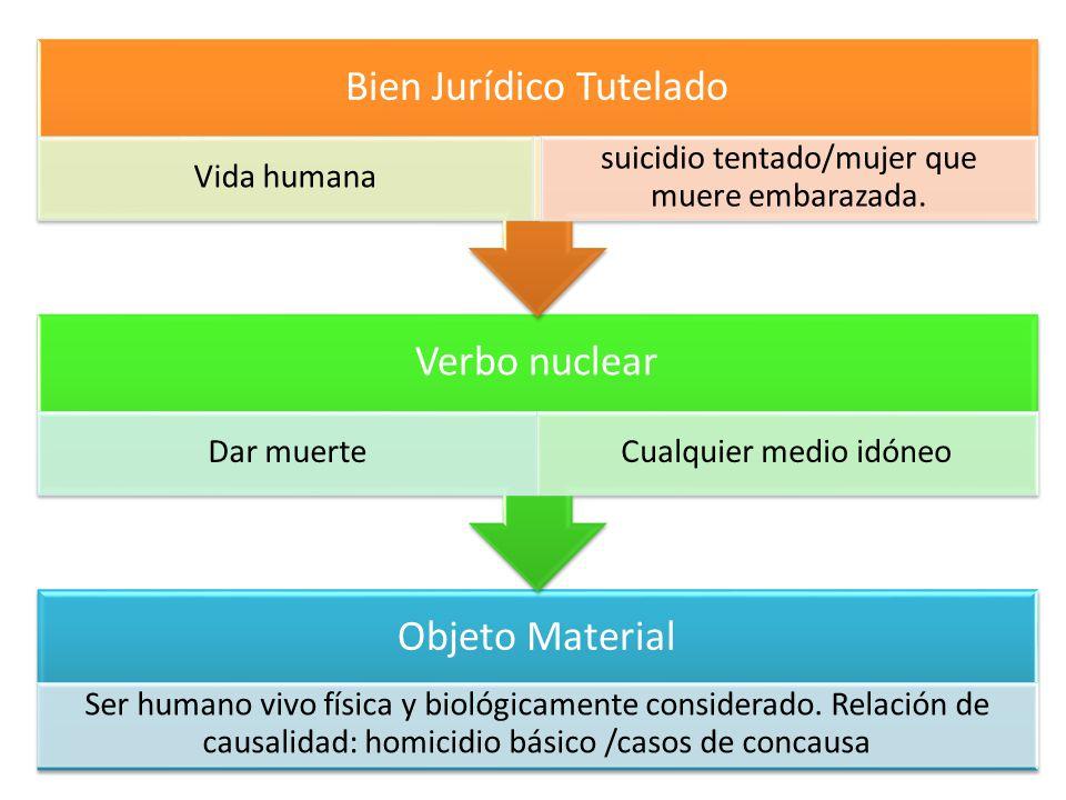 Bien Jurídico Tutelado Vida humana