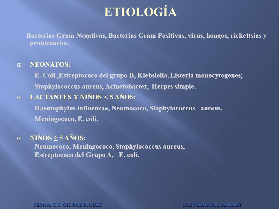 ETIOLOGÍA Bacterias Gram Negativas, Bacterias Gram Positivas, virus, hongos, rickettsias y protozoarios.