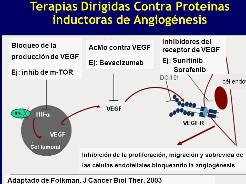 Terapias Dirigidas Contra Proteínas inductoras de Angiogénesis