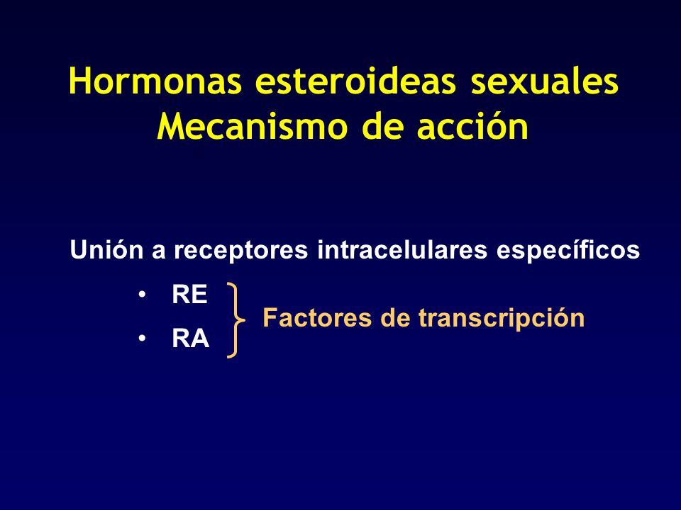 Hormonas esteroideas sexuales Mecanismo de acción